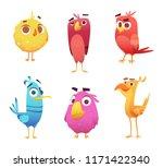 cartoon birds. chicken eagles...