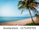 beautiful tropical beach with... | Shutterstock . vector #1171455703