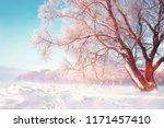 scenic winter background. snowy ...   Shutterstock . vector #1171457410