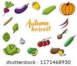 autumn harvest  set of fresh... | Shutterstock .eps vector #1171468930