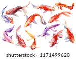 Set Of Beautiful Orange Fish  ...