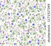 seamless floral pattern  meadow ... | Shutterstock .eps vector #1171527349