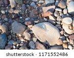 beautiful stones and beach...   Shutterstock . vector #1171552486
