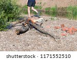 bonfire on a summer day ...   Shutterstock . vector #1171552510