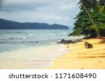 s o tom  and principe  tropical ... | Shutterstock . vector #1171608490