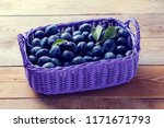 basket full of delicious plums  ... | Shutterstock . vector #1171671793