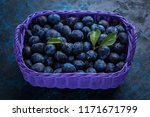 basket full of delicious plums  ... | Shutterstock . vector #1171671799