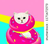 donut cat. donut lover.... | Shutterstock . vector #1171672573