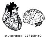 human organs. human heart and... | Shutterstock . vector #117168460