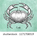ink sketch of brown edible crab ... | Shutterstock .eps vector #1171708519