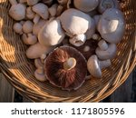 an oval braided basket full of... | Shutterstock . vector #1171805596