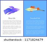 betta fish and swordtail fish... | Shutterstock .eps vector #1171824679