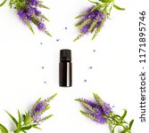 small bottle of dark glass with ... | Shutterstock . vector #1171895746