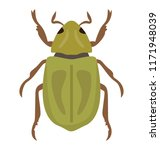 a insect having legs with... | Shutterstock .eps vector #1171948039