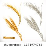 ears of wheat. 3d realism and...   Shutterstock .eps vector #1171974766