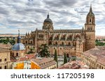 view to the cathedral of... | Shutterstock . vector #117205198