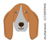 dog breeds design | Shutterstock .eps vector #1172055943