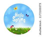 grass and flowers spring ball    Shutterstock . vector #1172103373