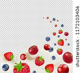 berry borders with transparent...   Shutterstock . vector #1172103406