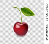 red cherry isolated white...   Shutterstock . vector #1172103430
