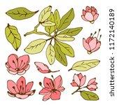 flowers  leaves  branch. hand... | Shutterstock .eps vector #1172140189