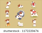 cute little puppy in his... | Shutterstock .eps vector #1172220676
