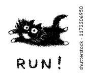 cute fur running cat. funny...