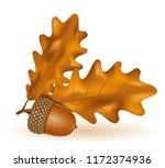 autumn oak acorns with leaves... | Shutterstock .eps vector #1172374936