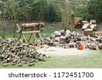 firewood on a saw horse with... | Shutterstock . vector #1172451700