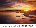 beautiful colorful winter... | Shutterstock . vector #1172572003