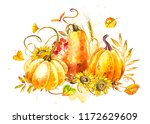 pumpkins composition. hand... | Shutterstock . vector #1172629609