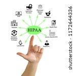 health insurance portability...   Shutterstock . vector #1172644336