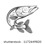 image pike fish | Shutterstock .eps vector #1172649820