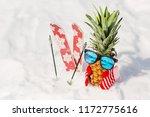 ripe attractive pineapple in... | Shutterstock . vector #1172775616