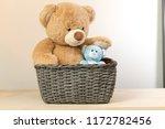 Teddy Bear Is Sitting In The...