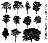 black tree silhouettes on white ... | Shutterstock . vector #1172854729