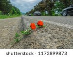 sorrow concept. loss of loved... | Shutterstock . vector #1172899873