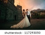 Wedding Beautiful Couple In The ...