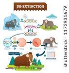 de extinction infographic... | Shutterstock .eps vector #1172931679