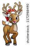 A Red Nosed Christmas Reindeer...