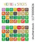 herbs   spices  kumin cumin  ...   Shutterstock .eps vector #1173000826