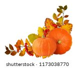 two orange pumpkins  hawthorn... | Shutterstock . vector #1173038770
