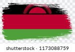 grunge brush stroke with malawi ...   Shutterstock .eps vector #1173088759
