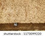 man agronomist farmer with... | Shutterstock . vector #1173099220