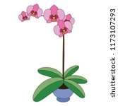 orchid flower cartoon. outlined ... | Shutterstock .eps vector #1173107293