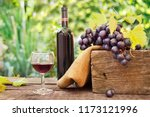 glass of tasty red wine with... | Shutterstock . vector #1173121996