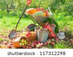 Harvested into a pile crop of vegetables in the garden - stock photo
