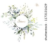 botanical design. herbal... | Shutterstock . vector #1173131629