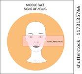 girl's face scheme... | Shutterstock .eps vector #1173135766