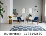 patterned blue carpet and...   Shutterstock . vector #1173142690